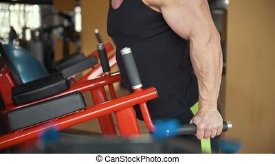 Muscular man training his bicep in a gym