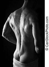 muscular, pelado, homem