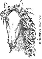 Sketched symbol of riding club or horse breeding and crossbreeding theme design with muscular and powerful thoroughbred stallion