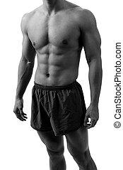 A headless shot of a muscular body
