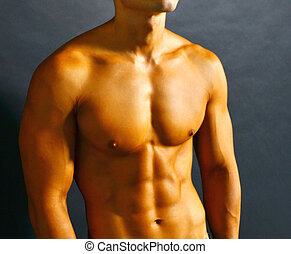Muscular Torso - Athletic shirtless male with tanned skin...