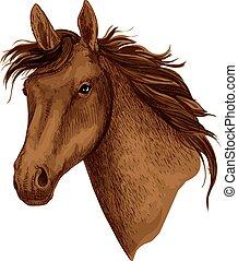 museau, cheval, cheval course, vecteur, sport animal, icône