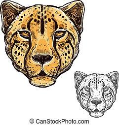 museau, vecteur, animal, africaine, sauvage, guépard, icône