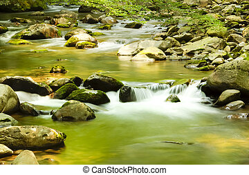 musgoso, río, por, bosque, cantos rodados