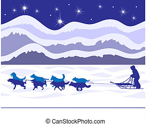 Musher and sled dogs by starlight - Classic winter sight in...