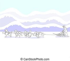 musher, hím szánkózik, befog