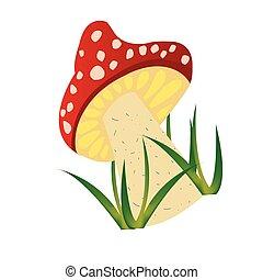 Mushroom draw over white background