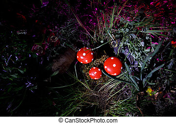 Mushroom. Fantasy Glowing Mushrooms in mystery dark forest close-up. Amanita muscaria, Fly Agaric in moss in forest. Magic mushrooms background