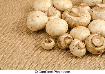 Image of mushroom on brown sack background