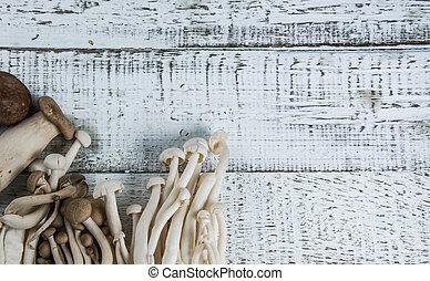 mushroom on the white wood