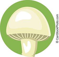 Mushroom vector color illustration.