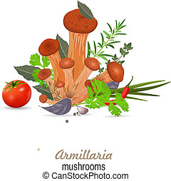 mushrooms armillaria with herbs for your design