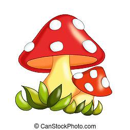 mushrooms - colored illustration of mushrooms