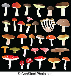 Mushrooms collection set vector background