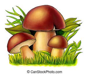 Mushrooms - Three mushrooms between grass and leaves. Mixed...