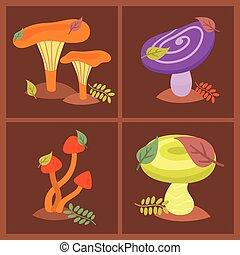 Mushrooms fungus agaric toadstool different art style design...