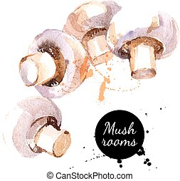 Mushrooms. Hand drawn watercolor painting on white...