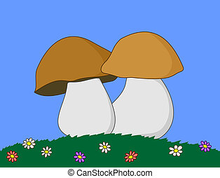 Mushrooms in a grass