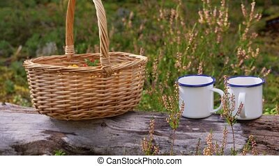 mushrooms in basket and cups of tea in forest - picking ...