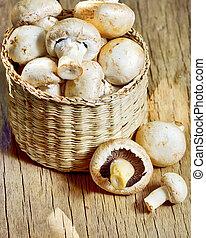 mushrooms in basket