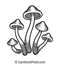 Mushrooms monochrome illustration - Magic Psilocybe...