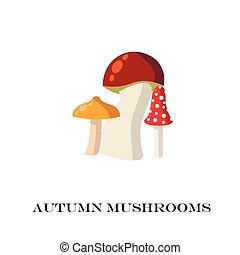 Mushrooms on the white background. vector illustration.