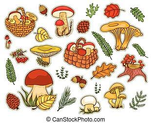 Mushrooms set isolated on white