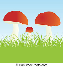 Mushrooms vector background