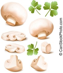 Mushrooms with parsley. - Collection of mushrooms with...