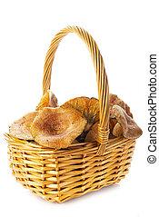 mushrroms, leche, cesta, azafrán, o, tapas, pino, rojo