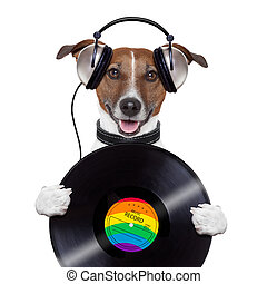 music headphone vinyl record dog