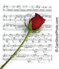 Music Rose - Single long stemmed red rose over sheet music
