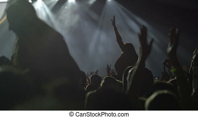 Musical fans having good time on the concert - Slow motion...