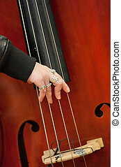musical, instrument ficelle