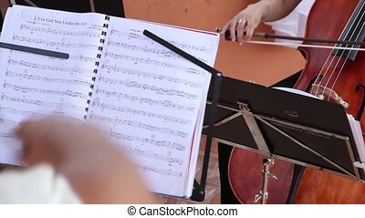 Musician play classical music on open air summer time -...