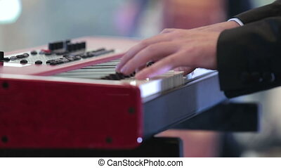 musician playing a musical instrume