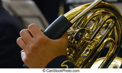 Musician playing the French horn, closeup - Hands close-up...