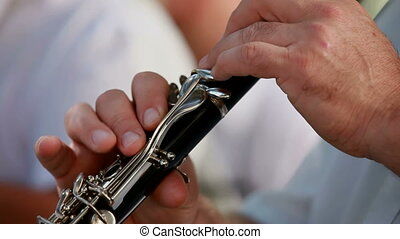 Musician plays the flute - Musicians play the flute...