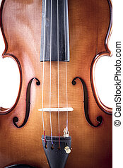 Musician, Violin front view isolated on white, vintage