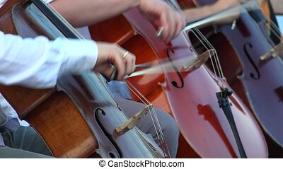 Musicians playing contrabass. 4K.