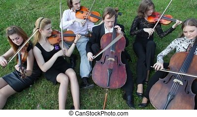 musicians plays music on stringed instruments