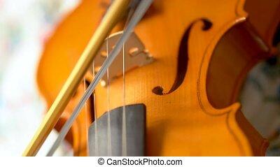 musicien, mouvement, fin, vue, violin., jouer, arc, long, haut, instruments à cordes