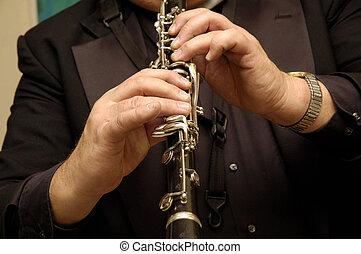 musiker, hände, spielende , ich