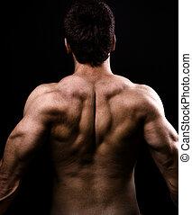 muskler, sunde, stor, tilbage, nøgne, mand