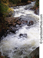 Muskoka Rappits - Rappits inthe Muskoka River Ontario