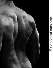 muskulös, man, med, stark, baksida, musker