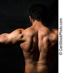muskulös, manlig, baksida