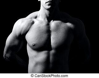 muskulös, mann, oberkörper
