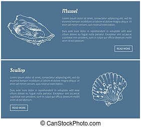 Mussel and Scallop Vector Vintage Illustration - Mussel and...