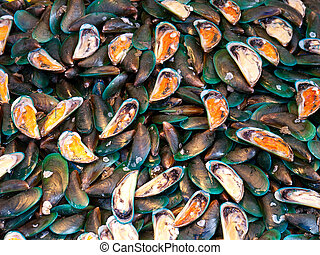 Mussels at a seafood market in Thailand
